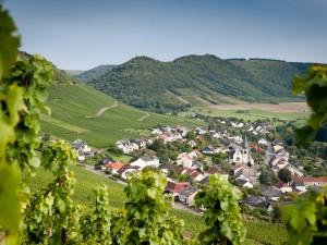 Weinhotel Klostermühle_Saar_Weinort_Ockfen_SSF8515